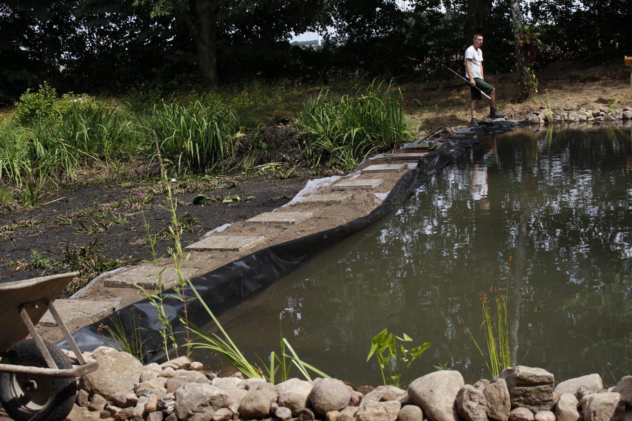 Der Damm trennt den neuen und den alten Schulteich